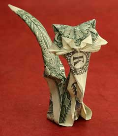 dollar bill cat