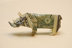 dollar bill rhino